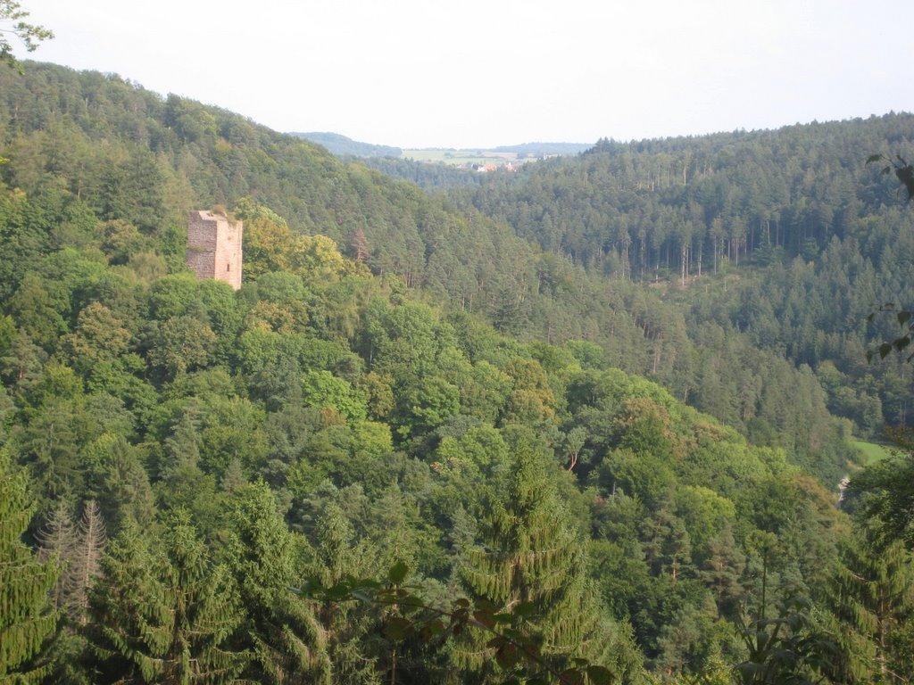 Burgruine im Wald